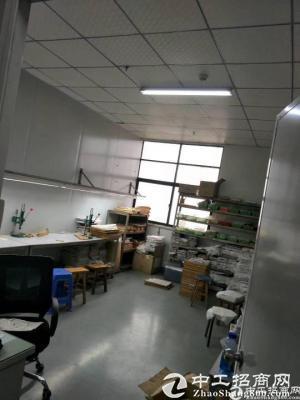 坪山新出无尘车间厂房300平出租-图2
