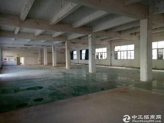 急租   坪山带地坪漆一楼1500平米出租-图2