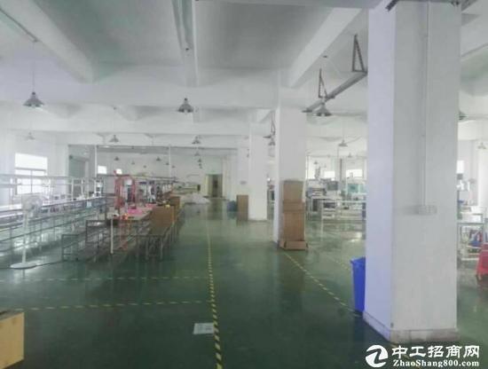 布吉周边新出八成新红本独院厂房6层12000平方-图4