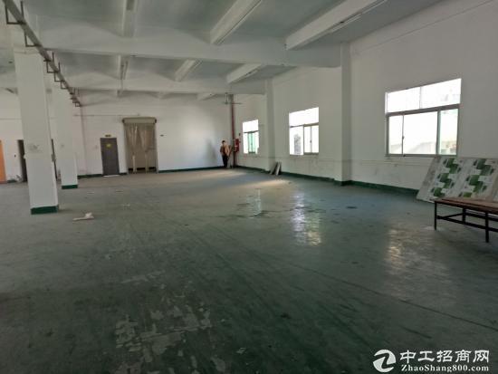 (出租)清溪浮岗新出标准二楼1200平方刷好地坪漆,位置好-图6