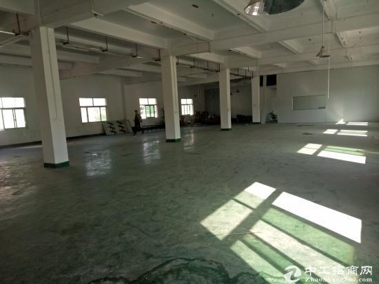 (出租)清溪浮岗新出标准二楼1200平方刷好地坪漆,位置好-图5