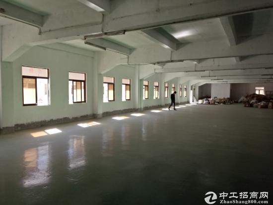 (出租)清溪浮岗新出标准二楼1200平方刷好地坪漆,位置好-图7