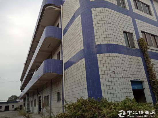 (出租)清溪三星独院厂房6200平方刚空出,水电齐全-图7