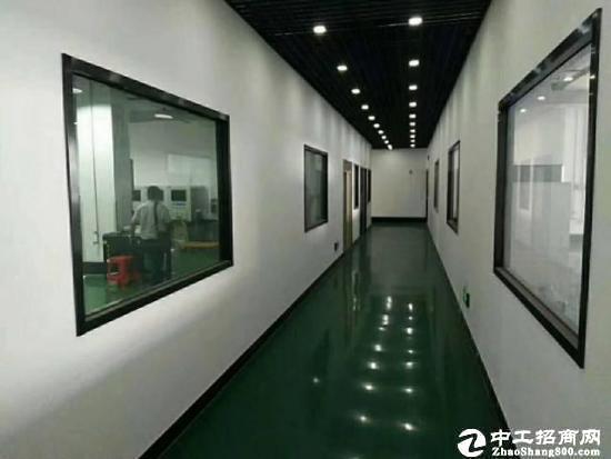 出租龙岗深汕路旁边新出厂房10500平出租-图3