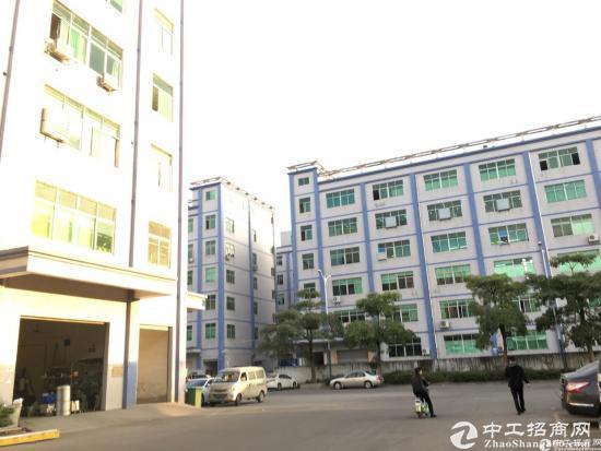 布吉周边新出八成新红本独院厂房6层12000平方-图3