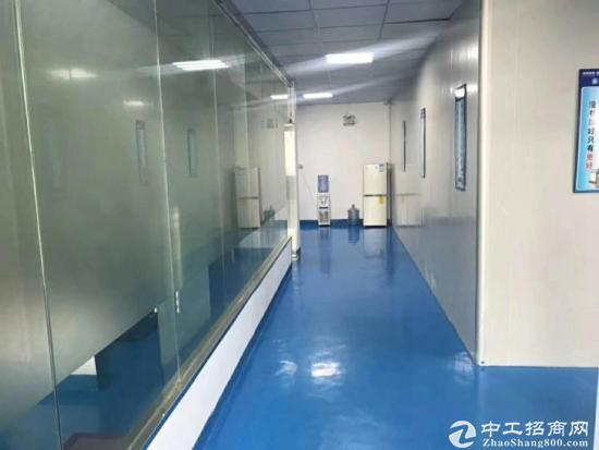 石岩宝石东路边新出楼上1800平精装修无转让费厂房招租-图5