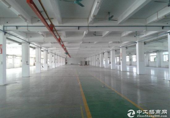 龙华独院3000平厂房 空地超大出入方便