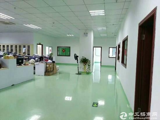 横岗荷坳原房东精装修厂房15000平方出租-图2