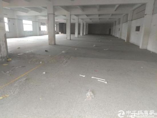 横岗六约社区全新翻新1200平方共二层单层600-图3