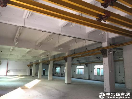 横岗 大康原房东带行车一楼高5米整层780平厂房-图3