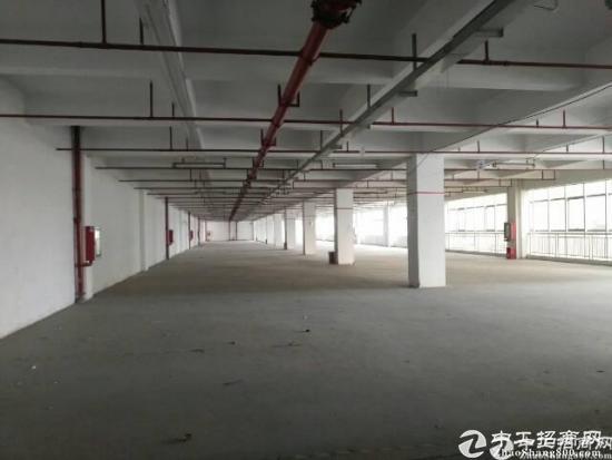 石岩专业物流园楼上5000平方仓库出租