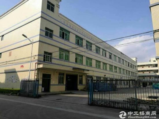 坪山三洋湖工业区一楼490平 高5米