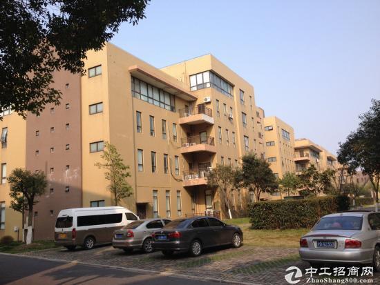 松江新桥园区独栋小面积办公研发总部出售438万