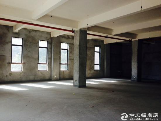 松江新桥园区独栋小面积办公研发总部出售439万