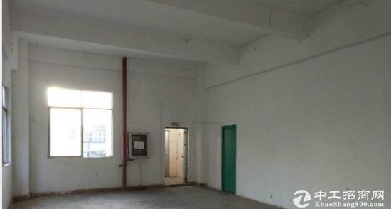 龙岗龙东新出独院厂房一楼1150平-图3