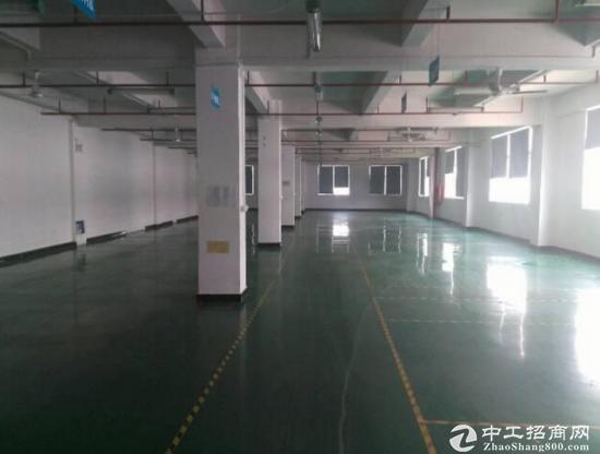 南联地铁站旁4层独院3600平厂房出租-图3