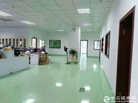 龙岗宝龙红本12000独院厂房出租-图3