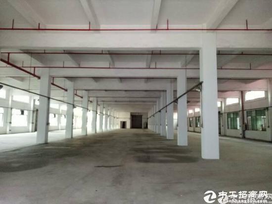 厚街新塘新出独门独院厂房10000平米,宿舍4000