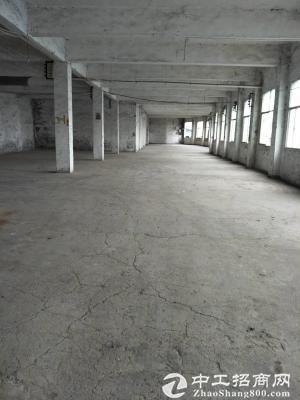 弹子石盘龙工业园区1000平厂房