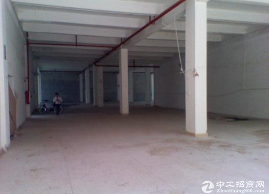 寮步凫山1500平方标准一楼厂房火爆出租