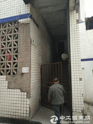 茶园新区江南水岸1200平米厂房、仓库出租-图2