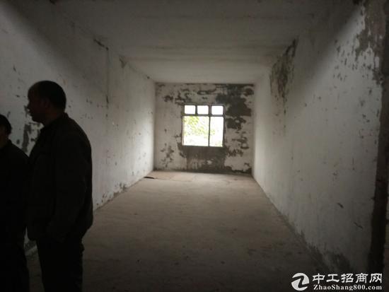 茶园新区江南水岸1200平米厂房、仓库出租-图3