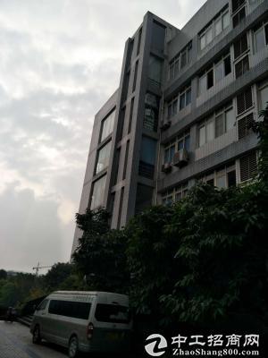南岸茶园新区长江工业园3100平标准厂房、仓库出租-图2