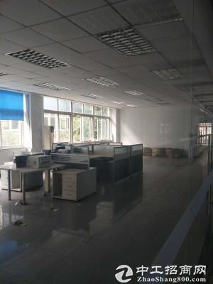 南岸茶园新区长江工业园3100平标准厂房、仓库出租-图3