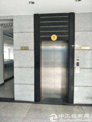 南岸茶园新区长江工业园3100平标准厂房、仓库出租-图5