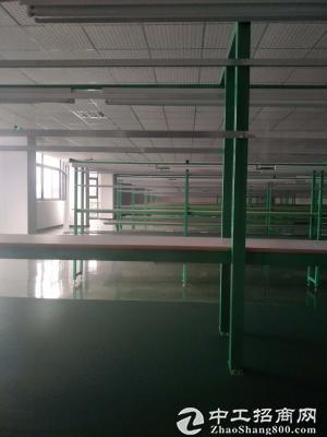 茶园长江工业园2700平米独栋手机厂房出租-图3