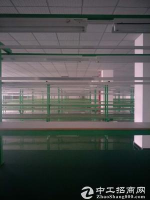 茶园长江工业园2700平米独栋手机厂房出租-图4