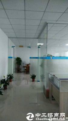 东莞市南城花园式独门独院8000平方厂房招租-图3