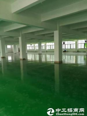东莞市南城花园式独门独院8000平方厂房招租