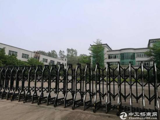 龙岗新出花园式红本独院厂房16000平米出租