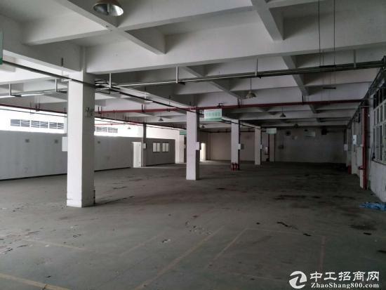 茶园3000平米标准厂房,仓库出租