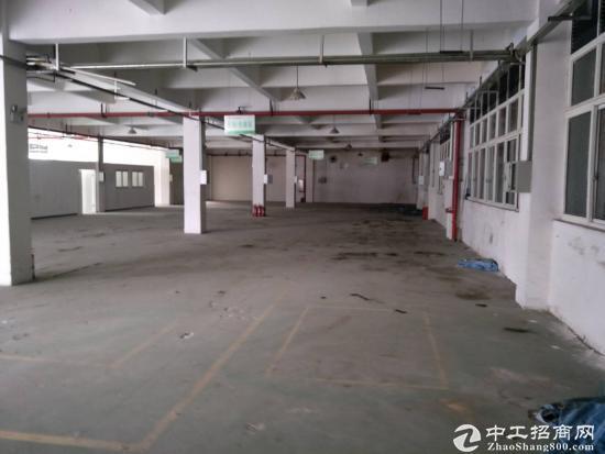 茶园3000平米标准厂房,仓库出租-图2