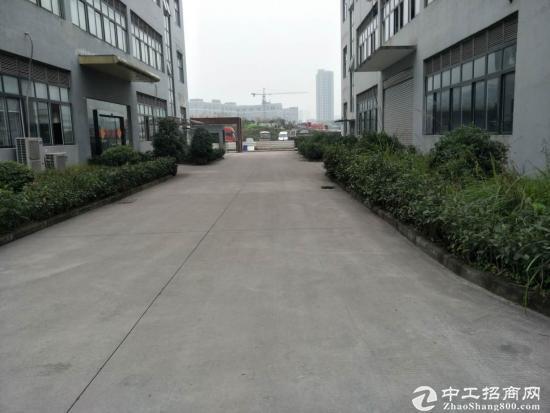 茶园3000平米标准厂房,仓库出租-图3
