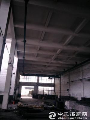 茶园1200平米标准仓库出租-图2