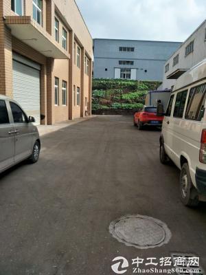 珞璜1200平米标准厂房、仓库出租-图3