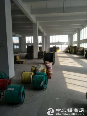 茶园2700平米标准厂房,仓库出租-图3