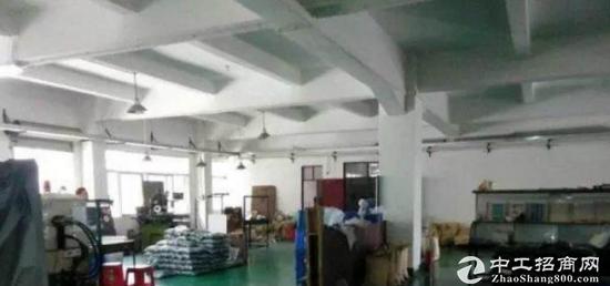 (价格低) 桥头东江现有标准二楼700平优质小厂房