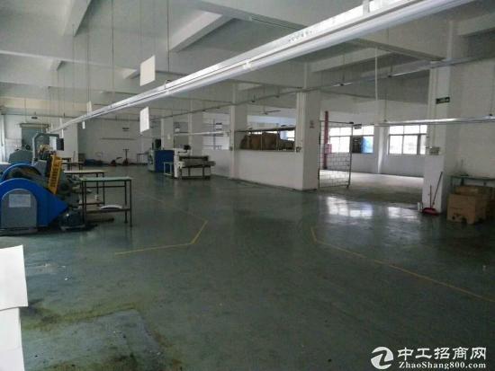 乌沙大润发旁1780平方一整层带办公室装修出租