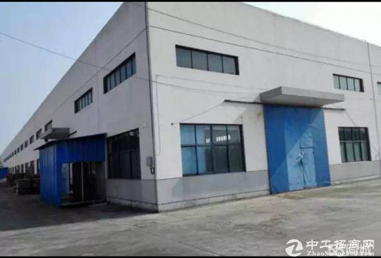 九亭独门独院3500平单层高8米仓库出租
