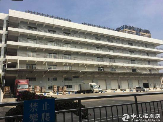 坪山大型红本两独院71000平方可整租分租-图4