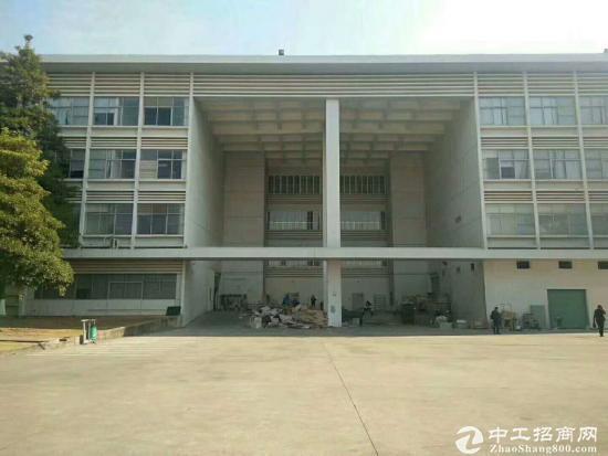 坪山大型红本两独院71000平方可整租分租-图3