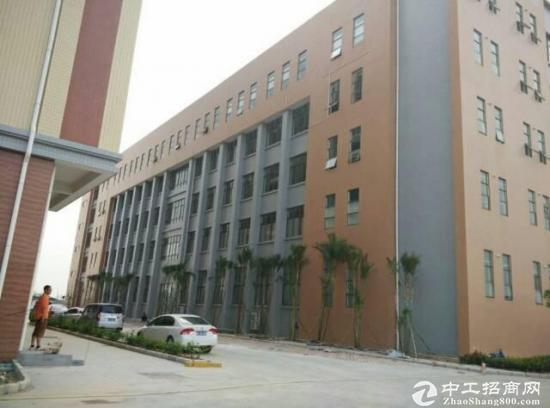 坪山 医疗产业园厂房 大小面积分租-图5