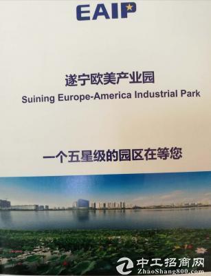工业园区全新标准电子厂房可租可售-图5