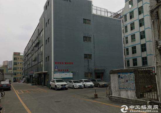 龙华免税工业园2000平厂房出租,配套齐全-图5