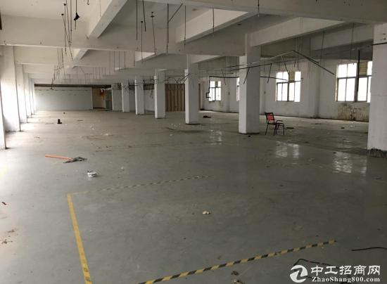 龙华免税工业园2000平厂房出租,配套齐全-图4