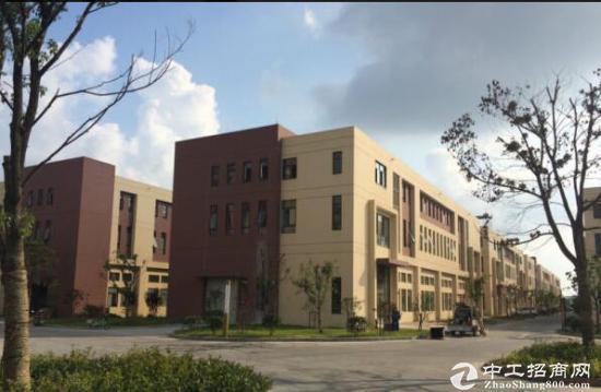 双流工业园标准厂房3000平米至17500平米出售
